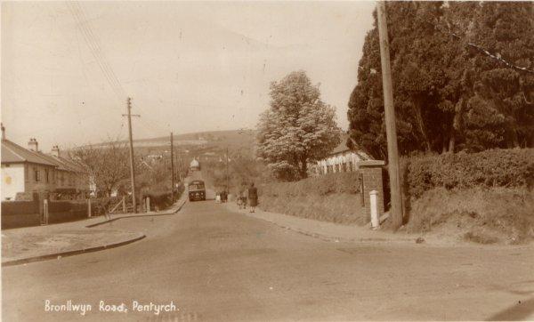 bronllwyn1950